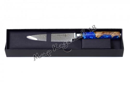 Нож для фруктов и овощей Tuotown TWB-D3, рукоять дерево+эпоксидка, сталь VG-10